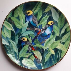 Wedgwood THE PARADISE TANAGER PLATE, Retro, vintage, shabby chic