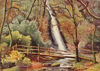 Vintage Linen Art Postcard, The Waterfall, Lydford Gorge, Dartmoor by CRP 92W