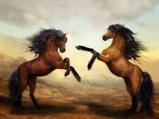 ZDJECIE, KARTKA, FREE PHOTO, PICTURE, WIRTUALNA POCZTOWKA  HORSE