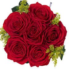 Preserved Roses Natural Forever Flowers Rosas Naturales Preservadas FIORE ETERNA