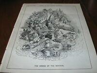 1882 Original POLITICAL CARTOON - MERMAIDs SIRENS WOMEN as World's BEACH RESORTS