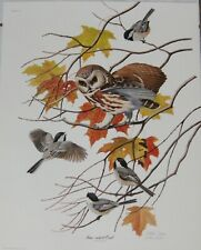 "Arthur Singer ""Saw-Whet Owl & Chickadee""  Limited Edition Signed Print 16 x 20"