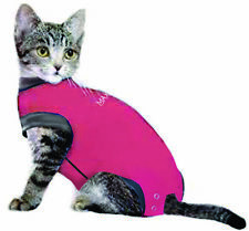 MAXX CAT E Collar Alternative Medical Pet Clothing After Surgery Recovery Suit