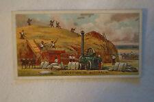 Vintage 1900's -Wills British Empire Series Card-Harvest in Australia -Havelock