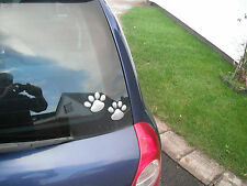 GOT CAR EYELASHES-LOVE DOGS-SPORT THESE LOVELY DOGGY FOOTPRINTS ON YOUR CAR