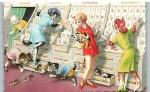 Postcard Cats Alfred Mainzer 4989