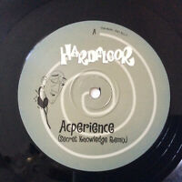 "Hardfloor ‎–  Acperience    ACID HOUSE   UK  1997  Vinyl 12""     MINT   UNPLAYED"