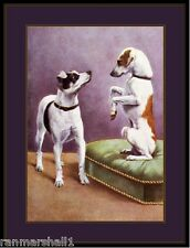 English Print Jack Russell Terrier Dog Duo Art Picture