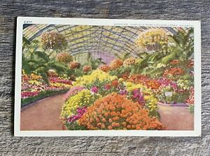 VTG Linen Garfield Park Conservatory West Side Chicago Illinois Botanical Bloom