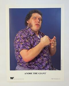 Andre the Giant ORIGINAL 1991 WWF 8.5X11 Promo Photograph! WWE! Titansports!