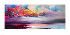 Scott Naismith (Stratocumulus) CANVAS  ART PRINT  50 x 100cm