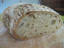 120g Fresh 15 year old Derbyshire Wild Yeast Sourdough Starter - Organic