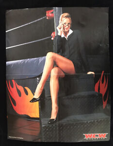 WCW Stacy Kiebler nWo Double Sided Poster 17x21 Wrestling Poster