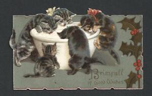 Y50 - KITTENS DRINKING MILK - RAPHAEL TUCK FOLDING EMBOSSED EDWARDIAN XMAS CARD