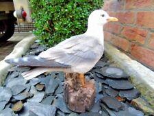MOUETTE , oiseau statue effet naturel et relief , nouveau !