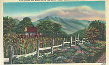 Sharp Top Mountain and Farm in Foreground  NC  Unused Mint Linen Postcard 10154