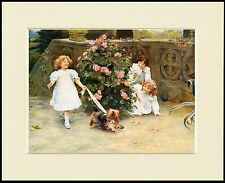 YORKSHIRE TERRIER CHILDREN CUTE LITTLE DOG PRINT MOUNTED READY TO FRAME