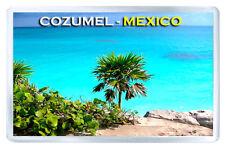 COZUMEL MEXICO MOD2 FRIDGE MAGNET SOUVENIR IMAN NEVERA