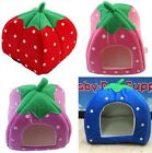 1XSoft Strawberry Shape Sponge Cotton Warm Pet Cat Dog Kennel Bed House S/M/L Y2
