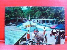 Postcard PA Pittsburgh Children's Zoo Highland Park Elephant