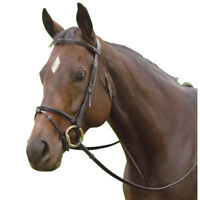 Exselle NEW Elite Plain Raised Event Bridle with Flash and Web Reins