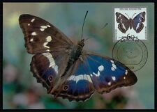 GERMANY MK 1991 SCHMETTERLING BUTTERFLY PAPILLON CARTE MAXIMUM CARD MC CM /m470
