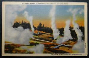 Postcard Norris Geyser Basin Yellowstone National Park - Haynes