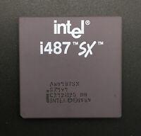 Intel i487SX Processor A80487SX SZ494 Math Coprocessor 487 FPU PGA169 25MHz RARE