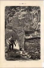Sylt - Vogelkoje original Holzstich aus Baudissin 1865