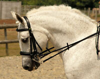 Rhinegold Leather Comfort Horse Double Bridle Padded   All Sizes