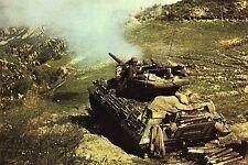 WW2 - Italie - Char français sur la Ligne gothique