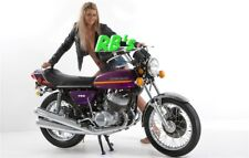 Kawasaki H2a 750 Triple 1973 H2a Decal set PURPLE  - Simply the BEST!
