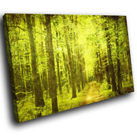 SC288 Retro Green Brown Forest Cool Nature Canvas Wall Art Large Picture Prints
