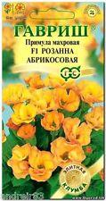 Primrose terry seeds F1 Roseanne apricot Tm Gavrish 5 seeds S1081