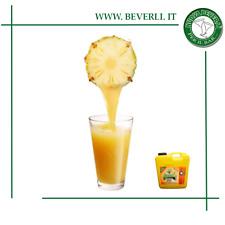Succo di frutta ananas concentrato 1° colazione, succhi hotel bed & breakfast