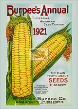 burpee's seed co ANNUAL AMERICAN SEED CATALOG as a 5x7 picture 1921 sweet corn