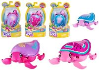 Little Live Pets Turtle Interactive Ages 5+ Toy Swim Water Play Gift Pet Sand