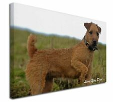 More details for lakeland terrier 'love you dad' x-large 30