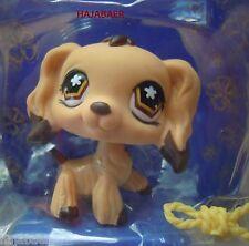 ★ღ Littlest Pet Shop ★ HUND COCKER SPANIEL MALTESER DOG CHIEN #575 ★ RAR NEU OVP