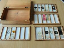 BOXED LOT OF 15 x INTERESTING 19th CENTURY MICROSCOPE SLIDES