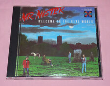 MR. MISTER Welcome to the Real World CD EX ORIGINAL US PRESSING MADE IN JAPAN
