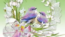 Birds In A Flower Nest Men T-Shirt Tee S M L XL 2XL 3XL
