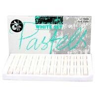 12 Set Jakar All White Artist Pastels Sketching Art Chalk Sticks Drawing Sketch