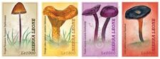 Sierra Leone- Mushrooms of the World Stamp - 4v MNH