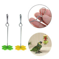2Pcs Parrot Fruit Fork Feeding Birds Hang Cage Stainless Steel Food Holder s