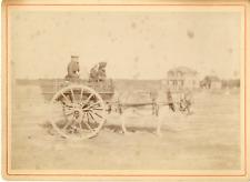 En carriole avec l'âne Vintage albumen print Tirage albuminé  1