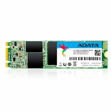 Adata SSD con 2 Ultimate Su800 256gb