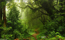 Rainforest photography Background 20X10FT Gaint Tree Studio Backdrop props MH591