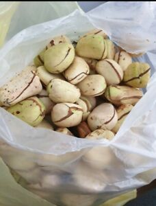 3 for £3 Fresh Hand-picked African Kola nut/ Nitida