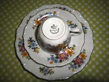 Seltmann Weiden Barock bunte Blumen Kaffee Wiesenblume 2 Unterteller 1 Milchkänn